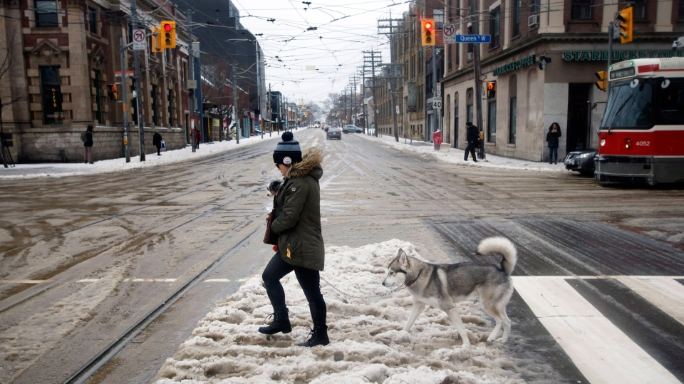 A woman crosses the street with a dog in her jacket and a dog in tow in Toronto, Ontario as a mix of snow, hail, and rain fall on Sunday, April 15. 2018. THE CANADIAN PRESS/Cole Burston