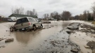ERCA's Tim Byrne says flooding hasn't been this bad in the Cotterie Park area since 1998. (Melanie Borrelli / CTV Windsor)