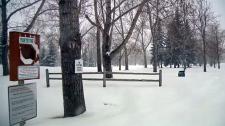 Snow, snowfal, storm, snow storm, spring storm, w