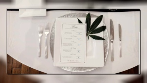 Chef Travis Petersen is hosting a pop-up dinner club where every dish is getting a dash of THC. April 16, 2018.