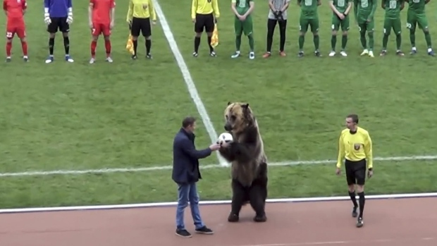 A bear performs at a Russian Second League match