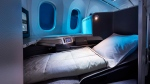 Air Canada's International Business Class cabin on the 787 Dreamliner is shown in a handout photo. Air Canada will be offering lie-flat seats on some North American routes as of June 1. (THE CANADIAN PRESS/HO-Air Canada)