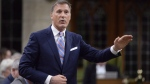 Member of Parliament Maxime Bernier rises during question period in the House of Commons on Parliament Hill in Ottawa on Thursday, Sept.28, 2017. THE CANADIAN PRESS/Adrian Wyld