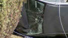 Road rage suspected in Shaughnessy crash