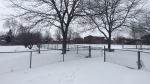 Salvation Army and Redwood Park Communities are teaming up to transform 2.5 acres of land on Lillian Crescent into the city's first family shelter. (CTV Barrie/Beatrice Vaisman)
