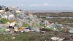 Motion tabled to study plastic crisis