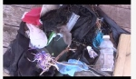 Garbage found on the beach in Goderich