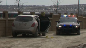 Police investigate fatal shooting in northwest Calgary | CTV News