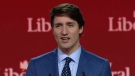 Justin Trudeau at the Liberal convention in Halifax.