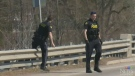 Body of young person pulled from Grand River