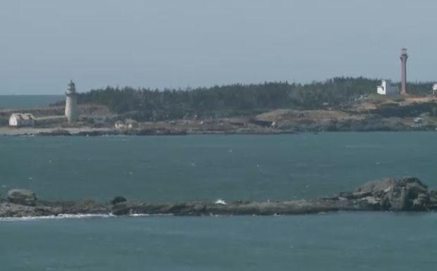 Nova Scotia's harsh winter coast stars in horror film screened at Cannes