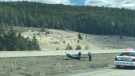 The small plane made an emergency landing on the median of B.C.'s Coquihalla Highway. (Twitter / @RyanManseau)