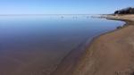 Jan Hallman, Sauble Beach