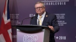 Canada's Minister of Public Safety Ralph Goodale addresses the media during a press briefing in Toronto on Monday, April 23, 2018.THE CANADIAN PRESS/Chris Young