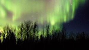 Aurora Borealis on the horizon. Photo by Sandra Macdonald.