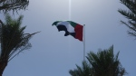 The flag of the UAE flying at the Louvre Abu Dhabi. (Jeremy Thompson / flickr (CC BY 2.0))