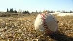 sportsfields