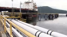 The Trudeau government is taking heat on Wednesday after it was discovered that federal money was going towards a citizen's action group in opposition to the Trans Mountain pipeline.