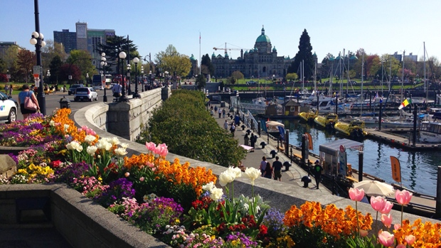 Victoria's Inner Harbour is shown on Thurs