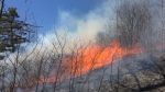 A prescribed burn was carried out at the FWR Dickson Wilderness Area on Spragues Road in North Dumfries on Monday, April 30, 2018. (Dan Lauckner / CTV Kitchener)