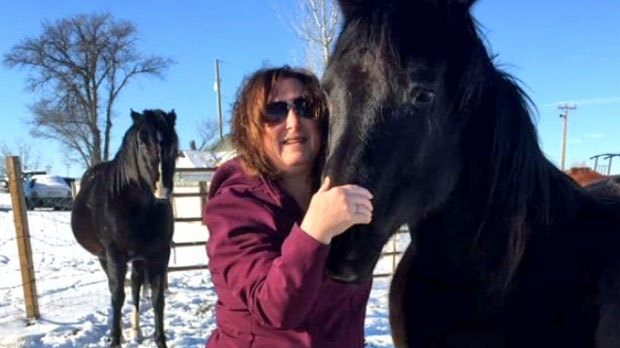 RCMP investigate missing horses