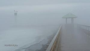 Heavy fog at Pembroke Marina (Linda Ringrose/CTV Viewer)