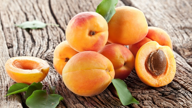 Pure garcinia cambogia and premier mango cleanse reviews