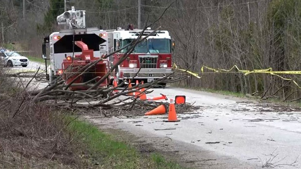 Emergency crews respond to the scene, after a tree fell on two people in Milton, Ont., on Friday, May 4, 2018.