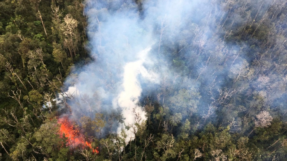 Smoke rises from a fissure in Leilani Estates in Pahoa, Hawaii, Monday, May 7, 2018. (U.S. Geological Survey)
