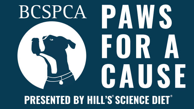 paws for a cause CC