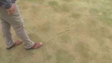 Old Drover's Run Golf Course