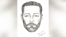 delta sex assault supsect sketch