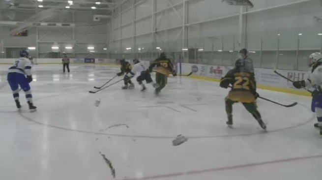 More than 600 hockey players representing every province and territory are in Membertou First Nation for the National Aboriginal Hockey Championships.