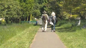 A pathway in Victoria's Beacon Hill Park is shown in this 2018 file photo.