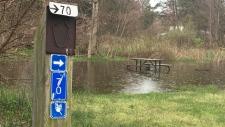 Rondeau flooding