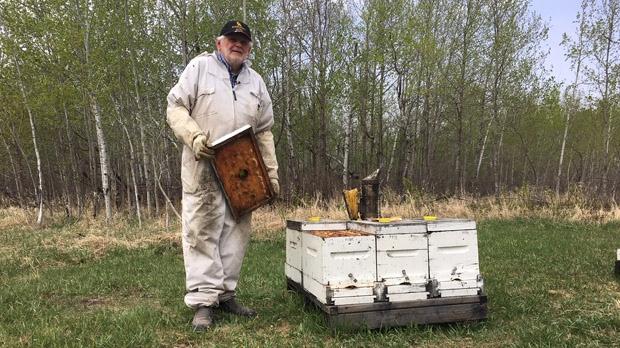 Teulon area apiarist Jake Maendel  holds a dead hive. (Beth Macdonell/CTV News)