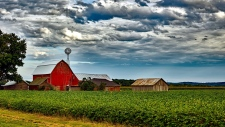 The average price of farmland in Canada has more than doubled in the last 10 years, leading to concerns about the future of agriculture in this country as a large group of farmers retires over the next decade.
