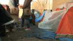 Homelessness count finds 286 people
