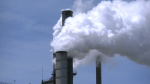 Gov't looking for carbon project funding