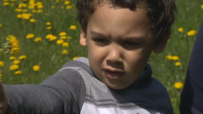 Briem Williams may not be able to attend school after having been diagnosed with non-verbal autism.