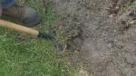 Preparing your soil can make or break your garden