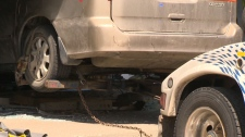 Van crashes through business