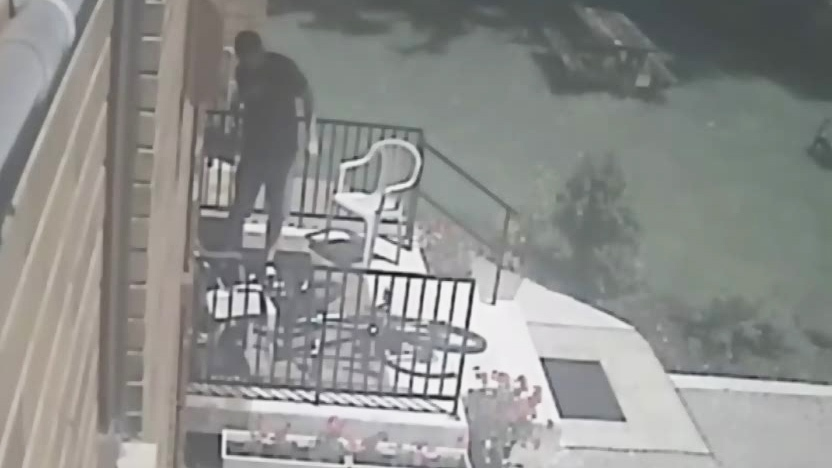 Surveillance camera footage obtained by CTV London shows a man punching a dog.