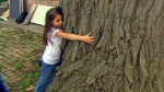 Little girl tries to save tree