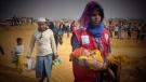 CTV National News: Rohingya refugees