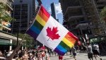A man holds a flag on a hockey stick during the Pride parade in Toronto on June 25, 2017. (THE CANADIAN PRESS/Mark Blinch)