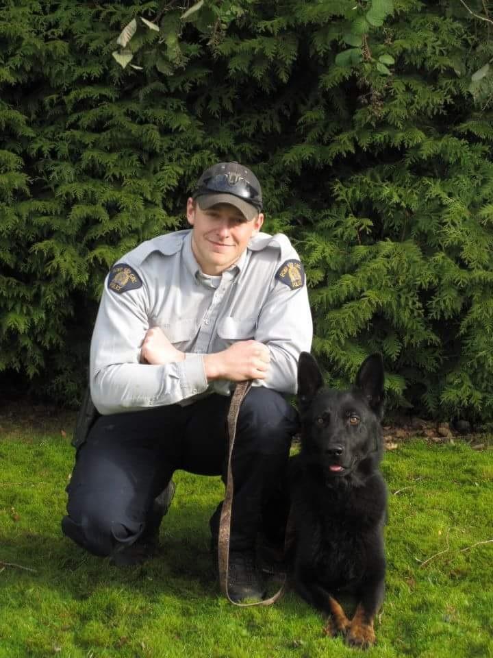 Dog Days Dog Training Vancouver