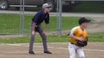 Umpire Matt Charlton works the first-base line during a youth softball game in Elmira.