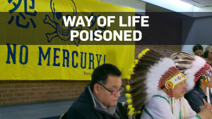 Poisoned fish killing an Ontario First Nation