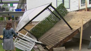 Ants blamed for deck collapse during barbecue